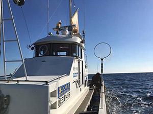 国崎 釣り船